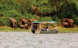 4 Days Lake Mburo